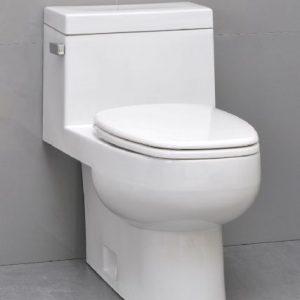 Back Flow Toilets