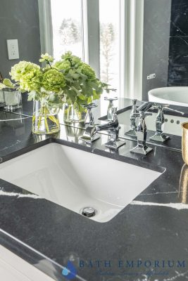 stylish sinks