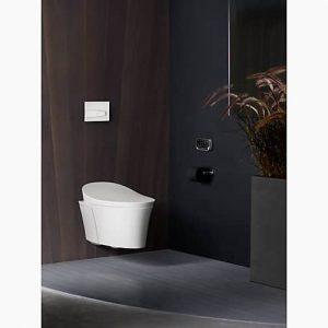 K-5402-0-Wall-hung-Toilet
