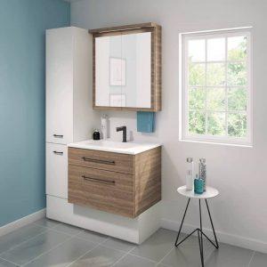 Wall Mounted Bathroom Vanities