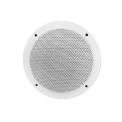 steam speaker